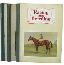 The Lilienfeld Collection - thoroughbred horses – Turf