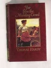 Far from the Madding Crowd (The great writers series: Their lives, works and ins