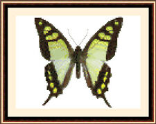 Butterfly 8513, Cross Stitch Kit