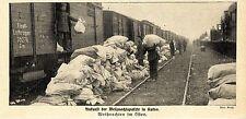 Kriegsweihnachten an der Ostfront * Deutsche Pakete in Kutno * Bilddokument 1915