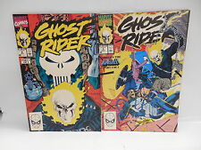 Ghost Rider Marvel Comic Books 5 6 Punisher Battle Issue Jim Lee Texeira Art