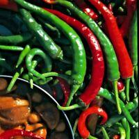 Capsicum chinense Bondamanjack Piment Antillais lot de 20 graines