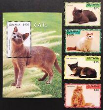 Guyana Cats Set & Souvenir Sheet 2007 Mnh Burmese Maine Coon Angora Snowshoe Pet