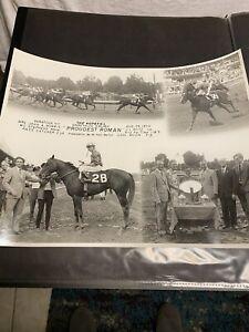 Proudest Roman-1970 Hopeful 11x14 Vintage Horse Racing Photo Woody Stephens