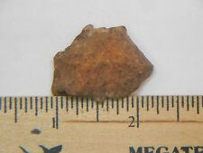 NWA Meteorite 16.26g 1 & 1/4 inches long
