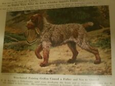 Walter A. Weber Wirehaired Pointing Griffon bookplate 1947 National Geographic