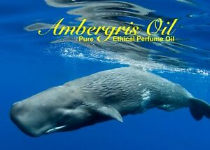 "Ambergris Pure Perfume Oil - ""Pure Amber Oil"""