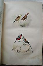 Oeuvres BUFFON T 6 2è partie Les Oiseaux 4 FLOURENS Garnier 1855