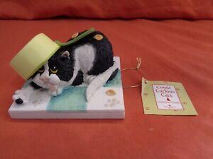 Rare BFA Border Fine Arts Comic & Curious Cats A Night On The Tiles A22199