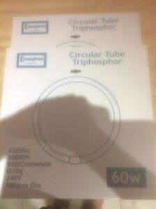 2 X 60W T9 Cool White Crompton Circular Fluorescent Tube Round - Col840