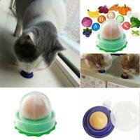 1x gesunde Katze Snacks Zucker Candy Licking-Solid Ball Energie Katzen Ernä Z3W1