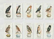 More details for ogdens 1939 set 50  british birds & their eggs  a quality set front & back(j290)