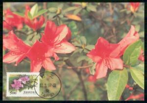 Mayfairstamps CHINA FDC 1997 MAXIMUM CARD RHODODENDRON FLOWER wwm20563
