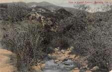 Monrovia California Sawpit Canyon Scenic View Antique Postcard J70608