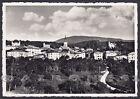 TRENTO COREDO 13 Val di NON Cartolina FOTOGRAFICA viaggiata 1953