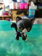 Littlest Pet Shop Angora Cat #55