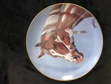 Danbury Mint A Heritage Of Horses Collection by Derk Hansen Morning Greeting