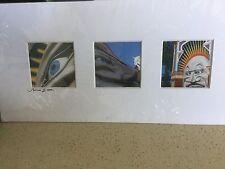 NEW SOPHIE J SIGNED PHOTOGRAPH Luna Park St Kilda 2010, with Border 16cm x33.5cm