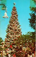 Vtg 1960s Disneyland Postcard Christmas Tree 1-272 - Unposted