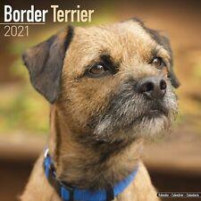 Border Terrier Calendar 2021 Premium Dog Breed Calendars
