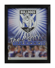 CANTERBURY BULLDOGS THE MIGHTY BULLDOGS NRL LICENCED POSTER FRAMED FULLY GLASSED