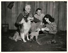 ELIZABETH TAYLOR / THE COURAGE OF LASSIE (1946) Vtg 11x14 photo w. baby lamb