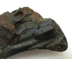 Hematite Stalagmites - Large Specimen for Cornwall