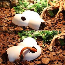 New listing Vivarium Reptile Decoration Aquarium Ornament Lizard Spider Eggshell Hide Cave.b