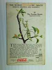 Coca Cola Card The World Of Nature Vintage Series Viii The Praying Mantis