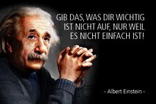 Albert Einstein Dicendo: 60 Segno Metallo Insegna ad Arco Stagno 20 x 30 CM