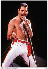 Queen Freddie Mercury Poster in La 1982 24x33 New Free Ship