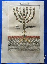 Altkoloriertes Blatt XXXII, Schedel Weltchronik 1493, Nürnberg, Judentum, Menora