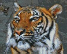 "Tigre Siberiano Completa puntada cruzada contada Kit 10 ""x 8"""