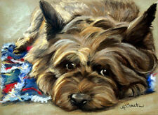SPARROW Cairn Terrier Dog Art Oil Painting Home Decor Gift PRINT toto oz puppy