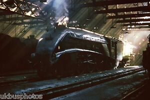 British Rail LNER A4 Pacific 60009 St Margarets Shed 15/07/65 Rail Photo R0192