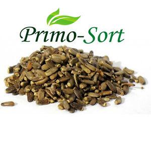 Milk Thistle Seeds Premium Quality 50- 225g Silybum Marianum Low Price