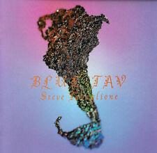 Steve Tavaglione – Blue Tav (Michael Landau, A. Holdsworth