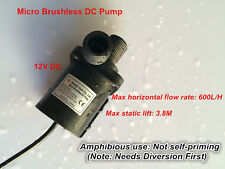 12V DC Micro Water Pump, Low noise 600L/H 3.8M Submersible For Water circulation