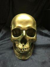 Gold Colored Human Skull Anatomical Model Anatomy