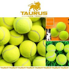 More details for 24x tennis balls outdoor sports fun dog fetch toy play cricket training beach uk