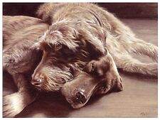 GERMAN SHORTHAIRED and WIREHAIRED POINTER GSP GWP GUN DOG LIMITED EDITION PRINT