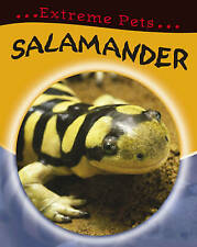 Salamander by Clare Hibbert