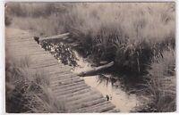 Ansichtskarte Naturschutzgebiet Georgenfelder Hochmoor - schwarz/weiß
