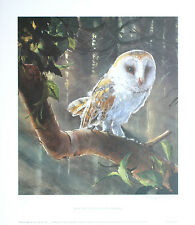 Owl by Dorothea Buxton-Hyde Signed Limited Edition print Barn Owl, Woodland bird