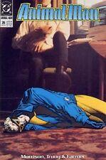 Animal Man (Vol 1) # 26 Near Mint (NM) DC-Vertigo MODERN AGE COMICS