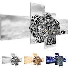 Bild Bilder Wandbild XXL - Afrika Leopard - Kunstdruck Leinwand Vlies - Wanddeko