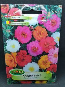 Portulaca grandiflora Moss Rose 4000 seeds Mix Colours