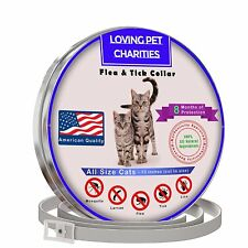 Flea And Tick Collar For Cats - 8 Months Protection - One Size Fits All - Large