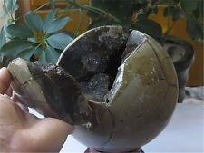 5846g HUGERARE Large Dragon Septarian Crystal Sphere Geode  Healing