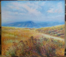 ORIGINAL OIL Painting Hand painted sky Landscape Artwork wall ART decor gift